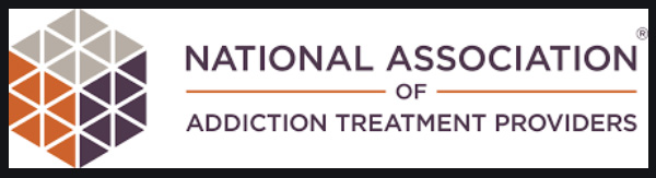 national association of addition treatment providers logo